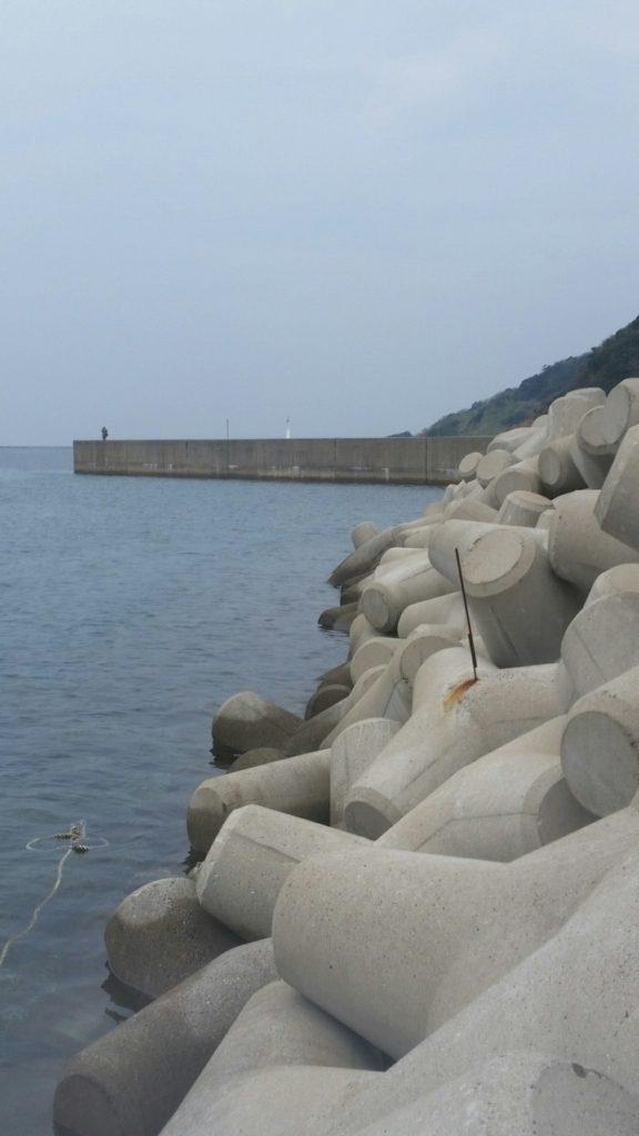 長崎エギングポイント 平戸市 京崎の岸際 アオリイカの数釣りが楽しめるポイント!