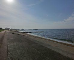 富山ロックフィッシュ(キジハタ)おすすめポイント 富山県射水市 海老江海浜公園