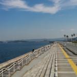 和歌山タチウオ釣りおすすめポイント 和歌山マリーナシティー大波止