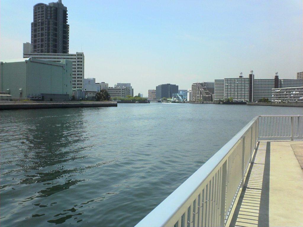 豊洲運河シーバスポイント  潮見運動公園 足場の良い東京湾奥おかっぱりポイント!