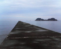 徳島 太刀魚(タチウオ)ポイント 阿南市 辰巳北突堤