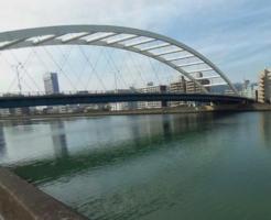 高知県シーバスポイント 鏡川大橋