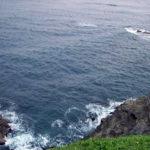 【黒鼻の磯】勝浦ヒラマサ釣りポイント