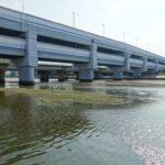 兵庫シーバスポイント 兵庫県西宮市 武庫川43号線周辺