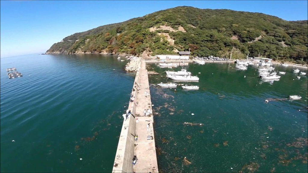 福井エギングポイント 福井県若狭町 神子漁港