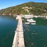 【神子漁港】福井エギング釣りポイント