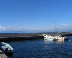 静岡アオリイカポイント 静岡県沼津市 平沢漁港