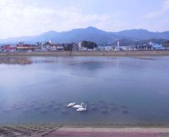 佐賀県チヌポイント 伊万里市 有田川