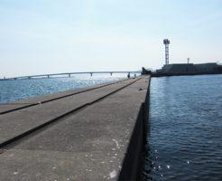 兵庫県タチウオポイント 神戸市 ポートアイランド沖堤防