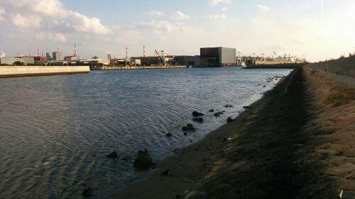 兵庫チニングポイント 加古川市 加古川河口&泊川河口