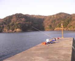 福井県アオリイカポイント 高浜町 音海学校裏の堤防