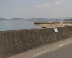 広島県キジハタポイント 福山市内海町 横田港 横の護岸