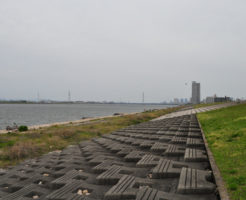 大阪チニングポイント 大阪市 淀川河口2号線周辺