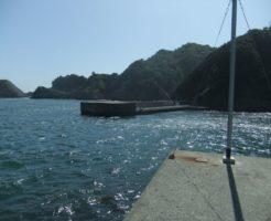 静岡県アオリイカポイント 南伊豆町 中木漁港