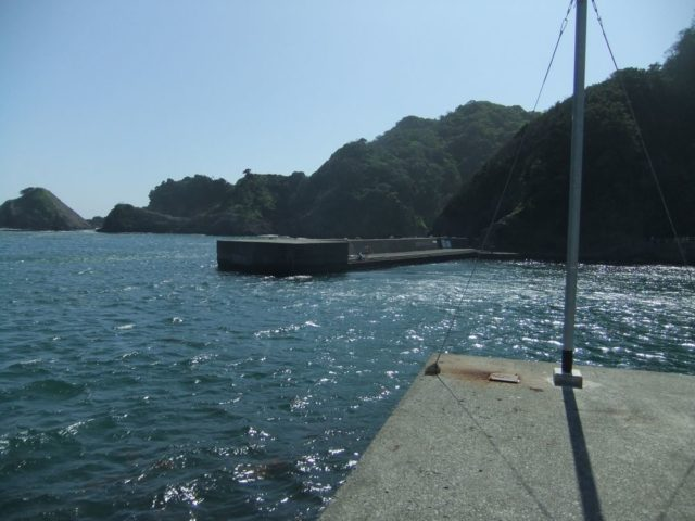 静岡エギングポイント 南伊豆町 中木漁港