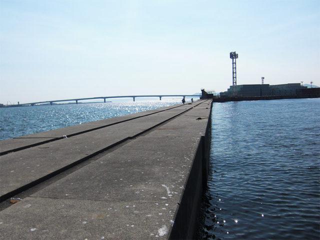 兵庫タチウオポイント 神戸市 ポートアイランド沖堤防