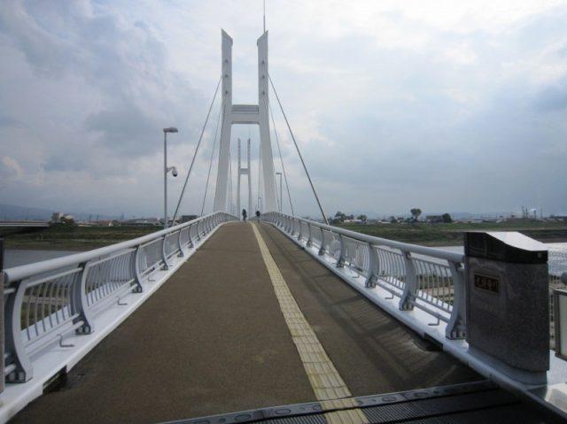 福井シーバスポイント 福井市 九頭竜川 中角歩道橋