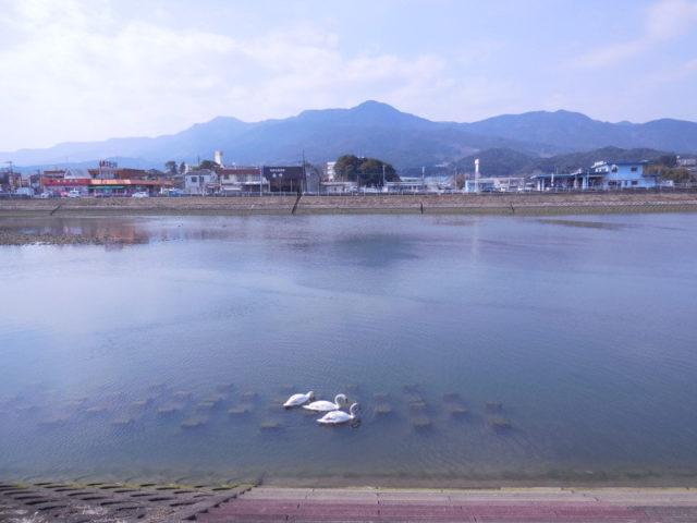 佐賀県チニングポイント 伊万里市 有田川
