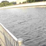兵庫県クロダイ・キビレポイント 尼崎市 蓬川周辺の運河