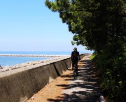 愛知県シーバスポイント 常滑市 りんくうビーチ周辺
