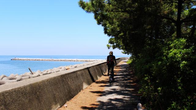 愛知シーバスポイント 愛知県常滑市 りんくうビーチ周辺