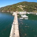 福井県メバルポイント 福井県若狭町 神子漁港
