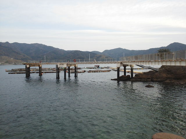 和歌山エギングポイント 日高郡 由良海釣り公園