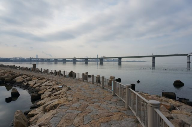 大阪チニングポイント 大阪府大阪市 淀川河口(右岸)