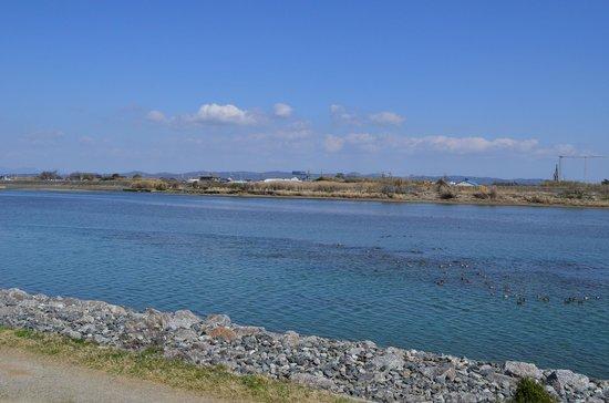 静岡サーフ(マゴチ)ポイント 磐田市 太田川河口サーフ