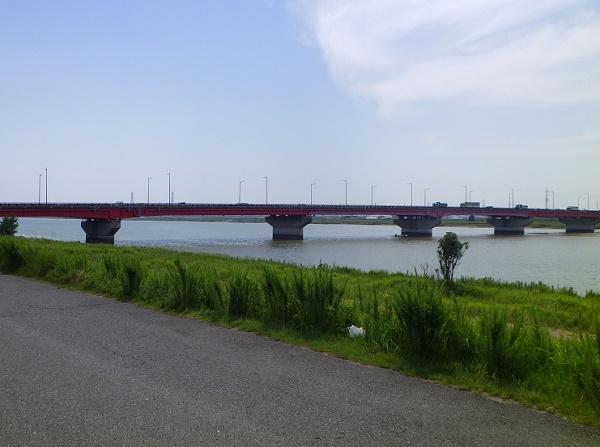 愛知シーバスポイント 愛知県碧南市 矢作川大橋下流部