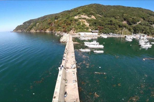 福井アオリイカ エギングポイント 小浜市 神子漁港