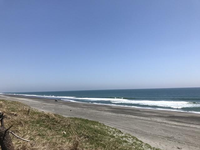 静岡ヒラメ釣りポイント 静岡県磐田市 鮫島海岸