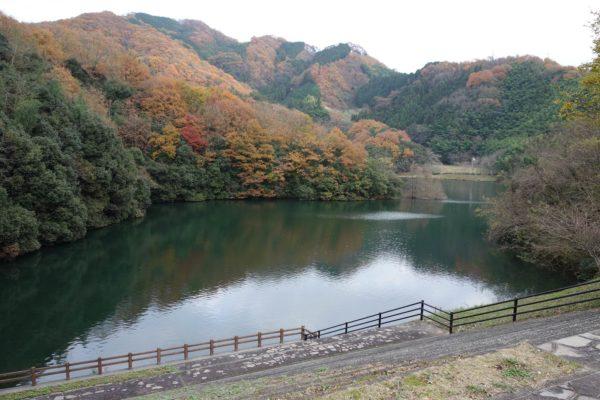 愛媛バス釣りポイント 石手川ダム おすすめ釣り場3選!