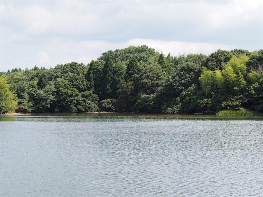 東播野池 バス釣りポイント おすすめ2選! 兵庫県のおすすめ野池フィールド!