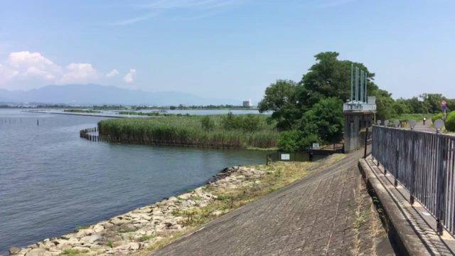 滋賀バス釣りポイント 滋賀県 琵琶湖・南湖