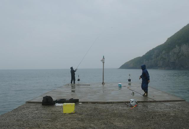 鹿児島ヒラスズキポイント 鹿児島県薩摩川内市 土川漁港