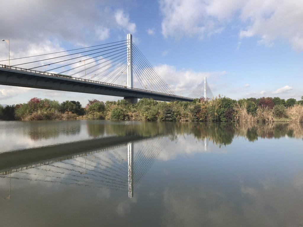 淀川バス釣りポイント おすすめ6選! 大阪を代表するバス釣りフィールド!