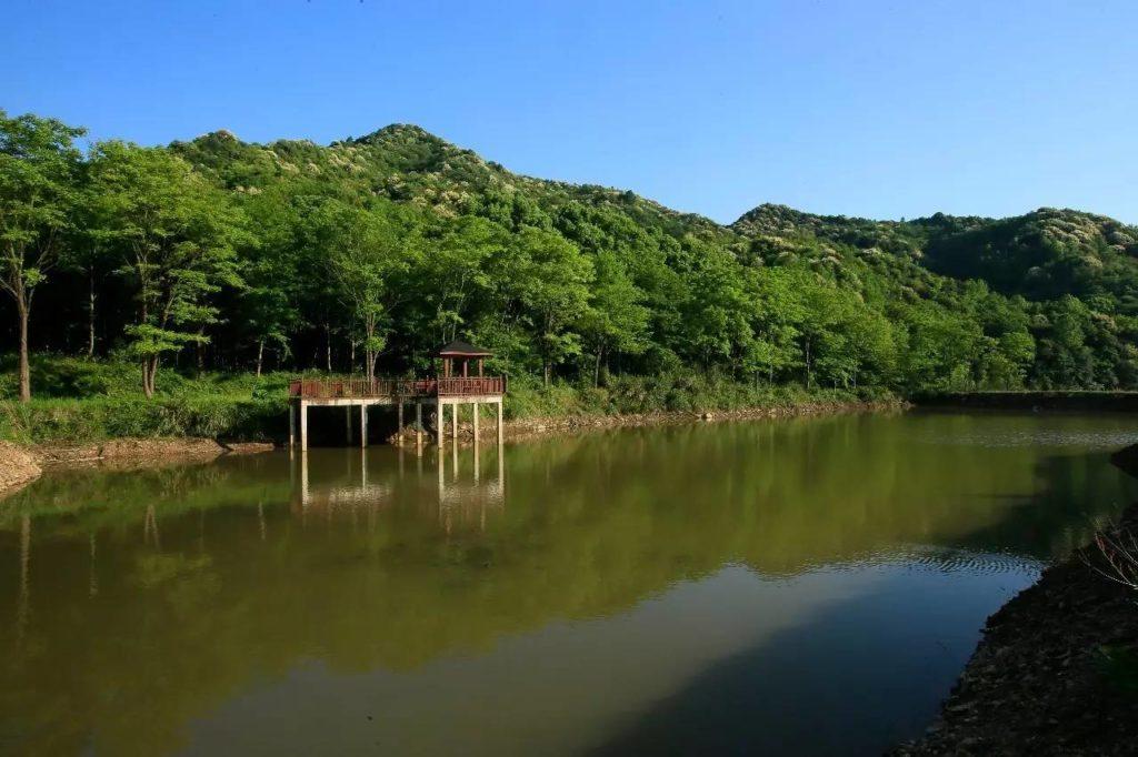 広島おかっぱりバス釣りポイント 三川ダム
