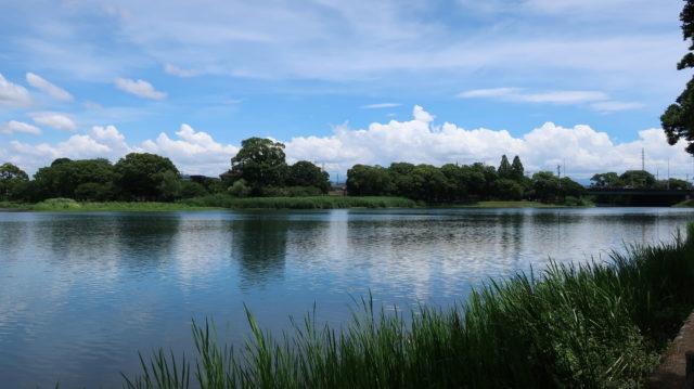 熊本バス釣りポイント 熊本県 熊本市 江津湖