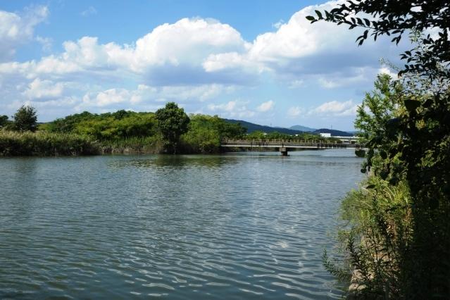 岡山バス釣りポイント 岡山県 南部 百間川&砂川