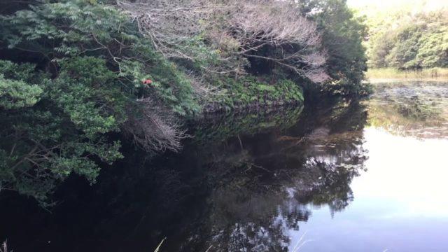 愛知バス釣りポイント 愛知県 知多半島野池群