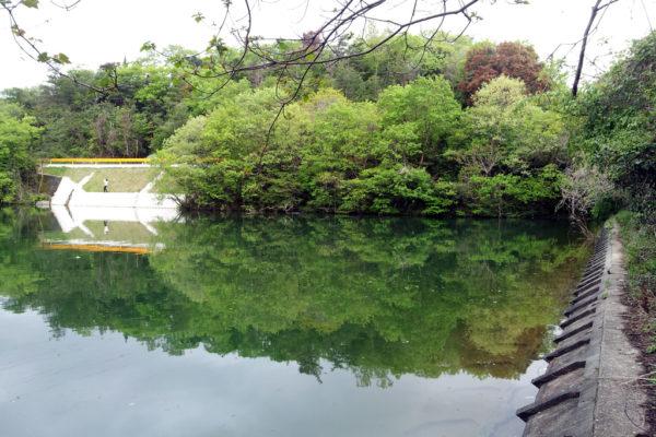 山口バス釣りポイント 丸山ダム おすすめ釣り場6選!