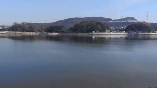 芦田川シーバスポイント 芦田川大橋 河口堰 ドリフト釣法の実績ルアーは!?