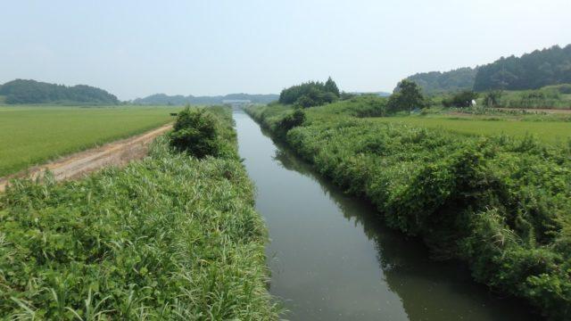 霞ヶ浦 バス釣りおかっぱりポイント 本湖南岸 おすすめ6選!