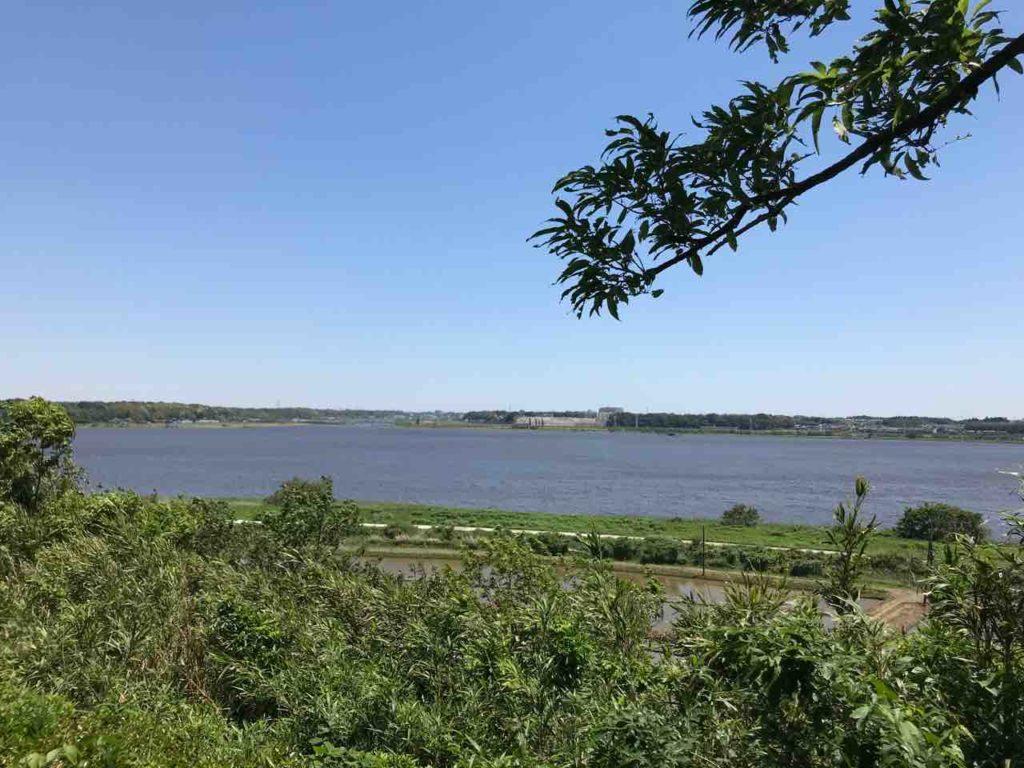印旛沼バス釣りおかっぱりポイント8選 西部調整池おすすめ釣り場