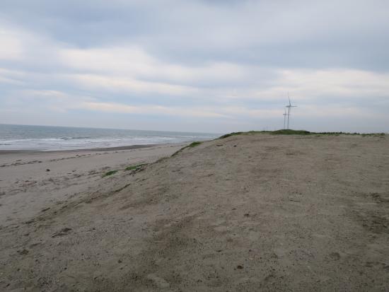 静岡ヒラメ サーフポイント 御前崎市 浜岡海岸 地形変化に富んだヒラメが集まるポイント!