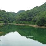 多々良沼バス釣りポイントおすすめ4選!【保存版】