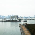 荒川シーバス釣りポイント【東京ヘリポート裏】を紹介します!
