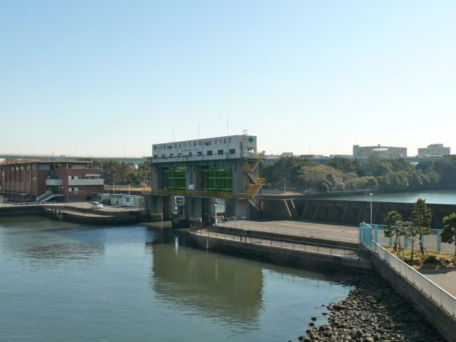 東京湾シーバスポイント【辰巳運河】地図付きで攻略法を解説!
