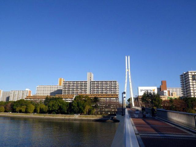 京浜運河シーバスポイント【八潮橋】